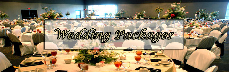 ssm_skinpanels_weddings2